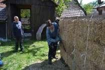 STEP-U3-load-bearing-straw-bale-training-33