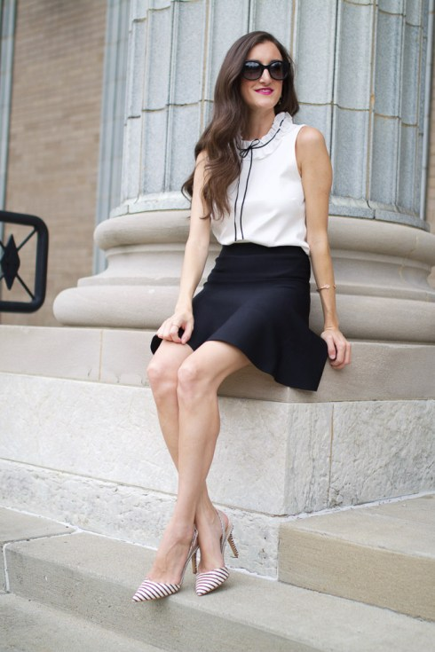 fit and flare skirt bcbg