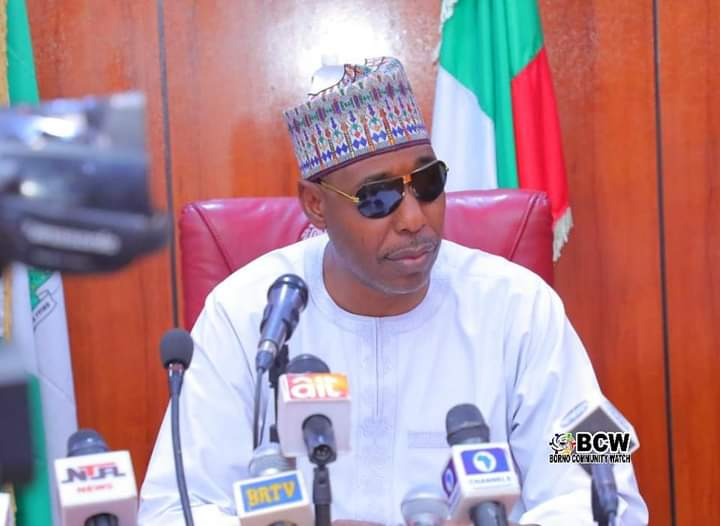 Borno Announces Resumption for Higher Institutes