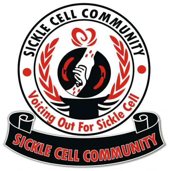 Sickle Cell Community Pays Advocacy Visit to Kano Commissioner of Police
