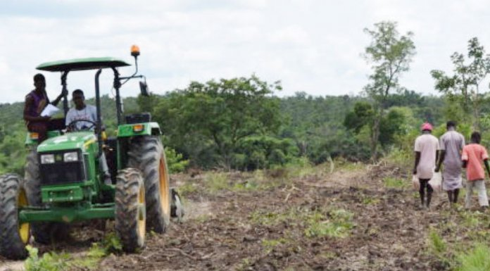 Developing a Legal Framework for Agriculture in Nigeria, by Bashir Saleh Abdu