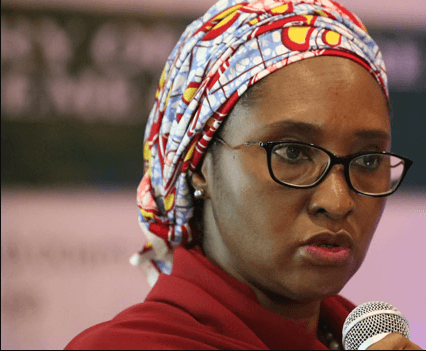 Zainab Shamsuna Ahmed, Finance Minister