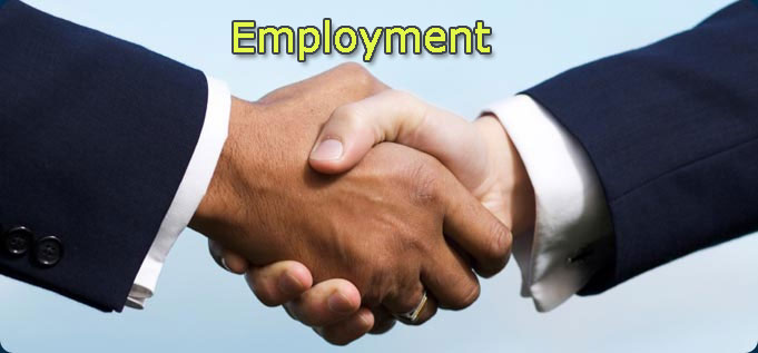 Federal government of nigeria gives employment