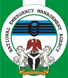 NEMA Distributes Relief Materials to 650 Households in Adamawa