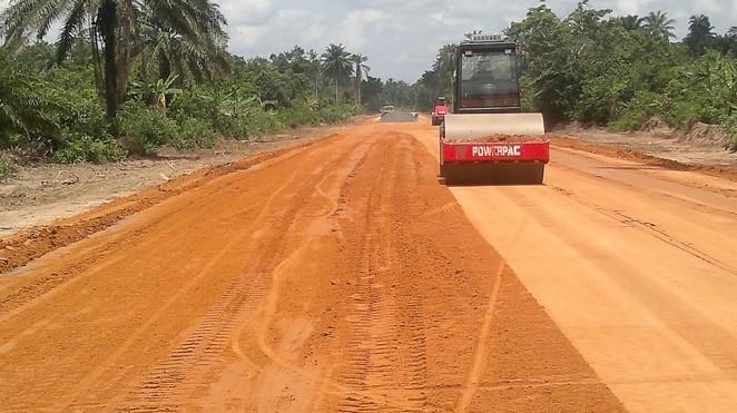 Niger delta project