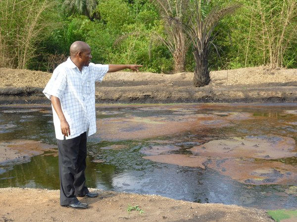 Rejionder: How Buhari awarded Ogoni cleanup to unqualified firm