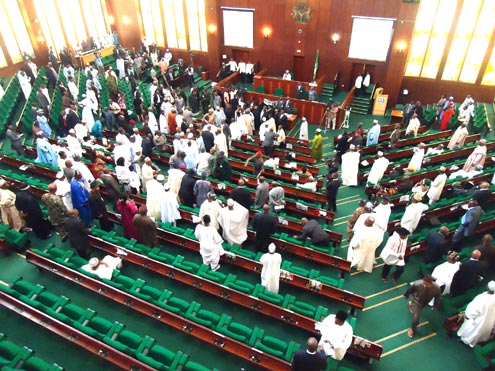 Lawmakers Express Concern over Overstretched Prisons in Nigeria