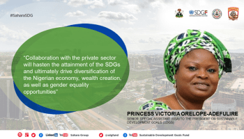 Domestication And Integration Of Sustainable Development Goals, Nigeria Takes Leadership Position In Africa – SSAP-SDGs