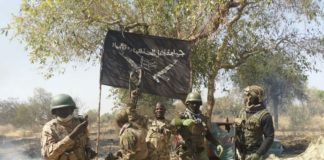 Troops in Sambisa Forest