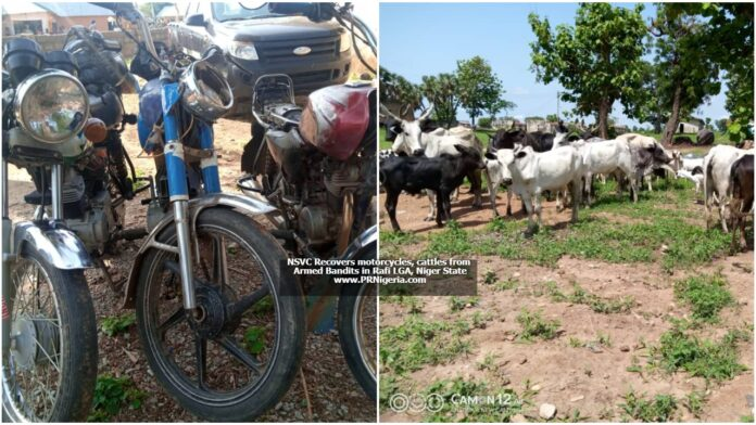 NSVC Recovers Motorcycles, Cattle from Bandits in Rafi Niger State