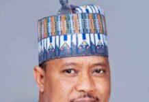 Prof. Yusuf Ahmed, Chairman NAEC