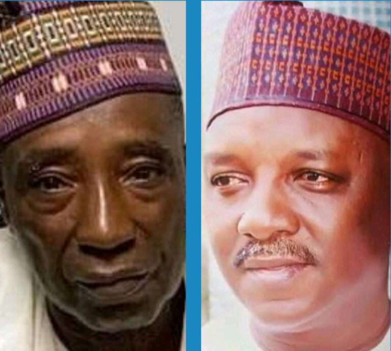 Nanono, Saleh and their Controversies as Ministers In Agric, Power