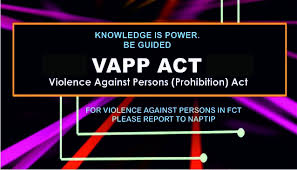 THE VIOLENCE AGAINST PERSONS PROHIBITION ACTS.