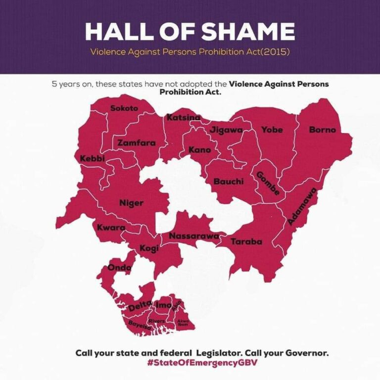 The Violence Against Persons Act (VAAP Act)