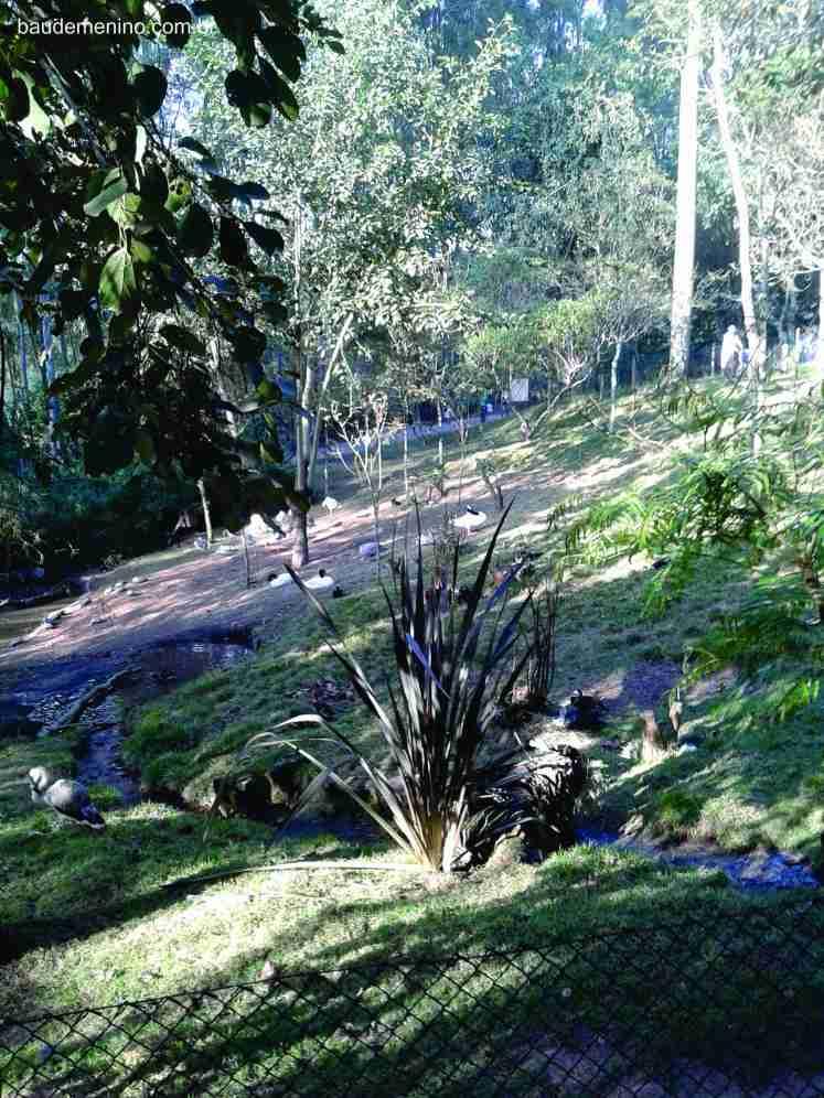 Zooparque Itatiba