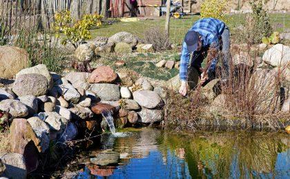 Frühjahrsarbeiten am Teich - Schönheitskur für den Gartenteich
