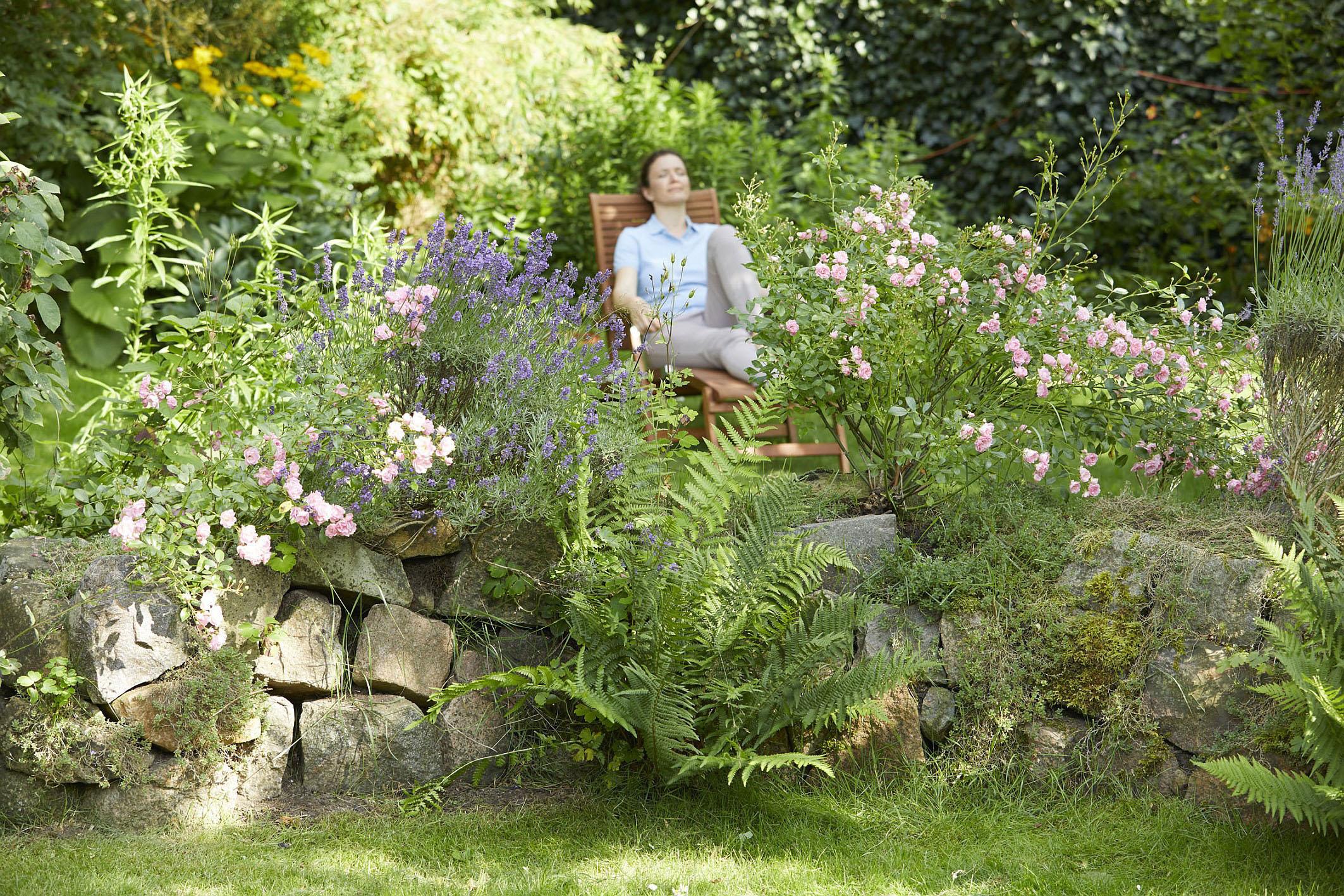 Sommerfrische im Garten