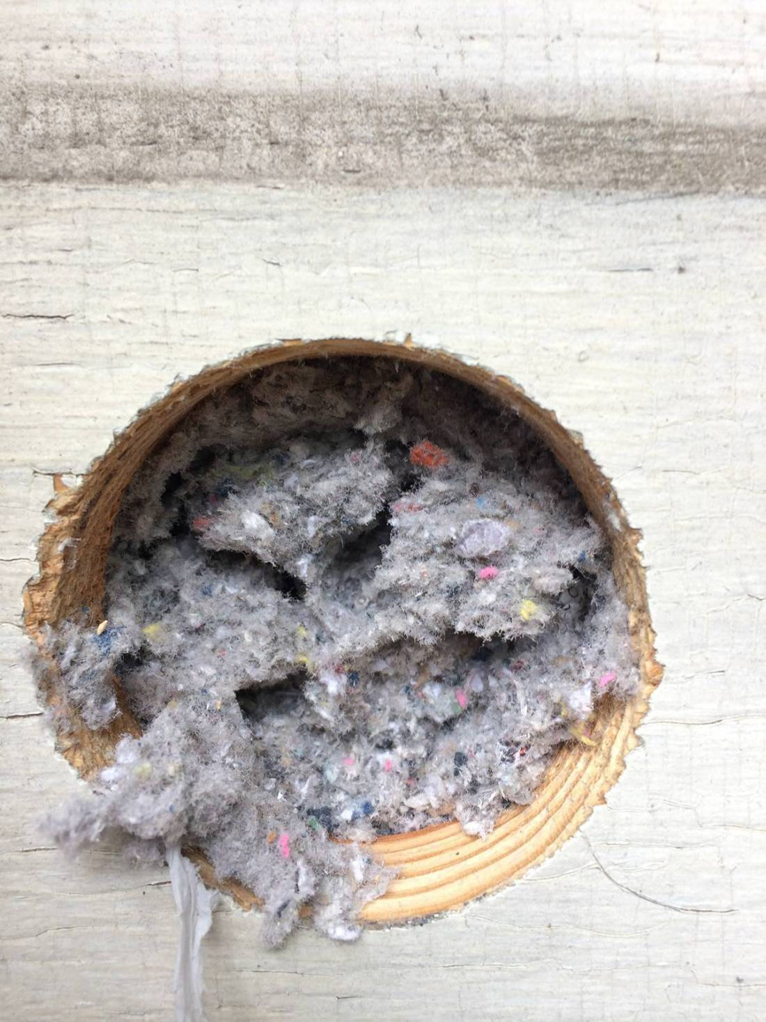 Cold House? Of Course It's an Insulation Problem! - packed cellulose insulation
