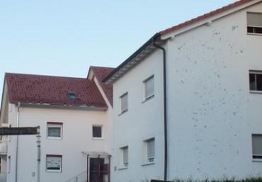 Haus kaufen Kosten Gutachter Haus Kauf bewerten schätzen mit Schaden am Putz