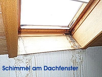 Schimmelpilz Immobilienexperte - Hausschätzer altes Haus ohne einen Makler verkaufen, auf Mängel hinweisen Haushalt, Wohnung , Schimmelbefall, Immobiliencheck-Hausinspektion Bauabnahme Eigentumswohnung Schimmel am Dachfenster
