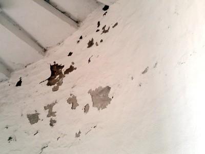 Keller, Haushalt, Wohnung , Schimmelbefall,Putzabplatzungen-Farbabplatzungen beseitigen