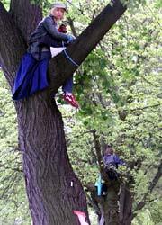 Baumschützerinnen