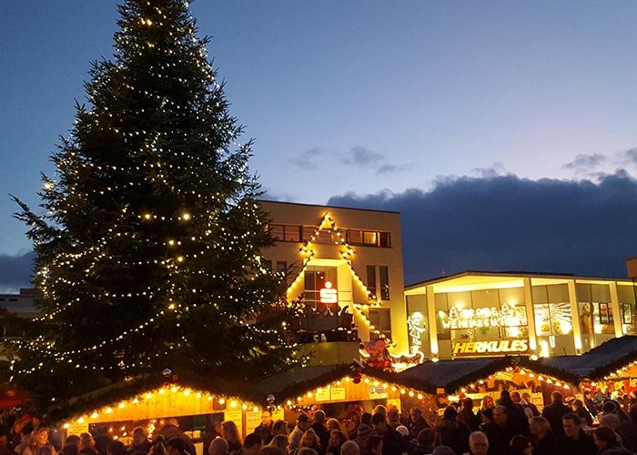 , Weihnachtsbäume für die Stadt – Gut gewachsene Bäume für die Weihnachtsdekoration in den Stadtteilen und auf dem Marktplatz Baunatal gesucht