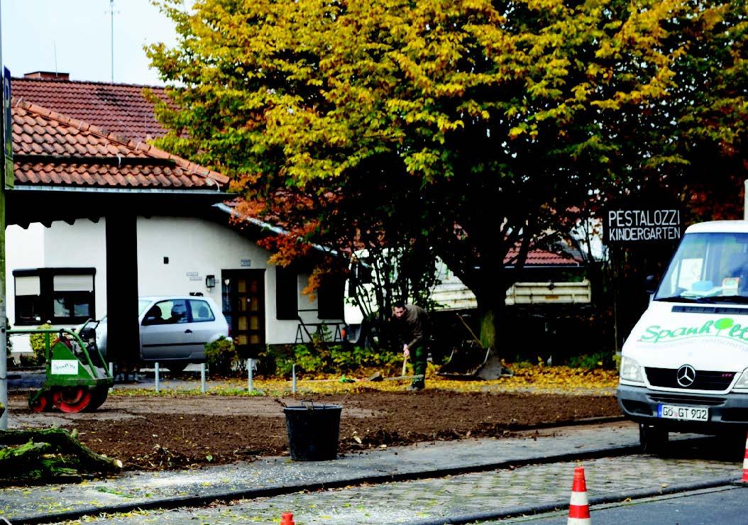 Umgestaltung von Pflanzflächen in den Stadtteilen Baunatals
