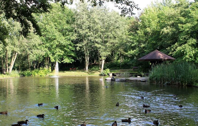 Baunatal, Stadtpark Baunatal, Wasser