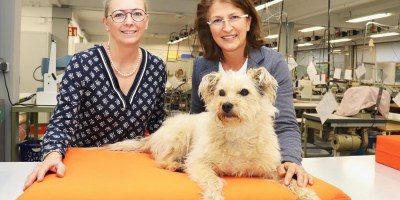 Hunde, bdks, TapMed, Baunatal, Hessen