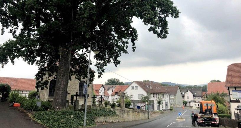 Friedenseiche, Rengershausen, Baunatal, BaunatalBlog