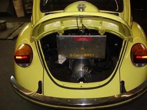 lorey-käfer