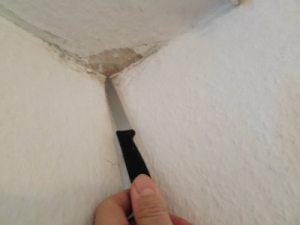 Hauskaufberatung Schimmel selber entfernen von Decke Beratung vor Hauskauf, Wand verschimmelt, Schimmelpilz Haus kaufen