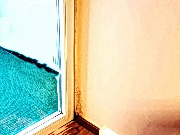 Schimmel in Wandecke Balkon, muffiger Geruch, angelaufene Fensterscheiben, Wohnungen
