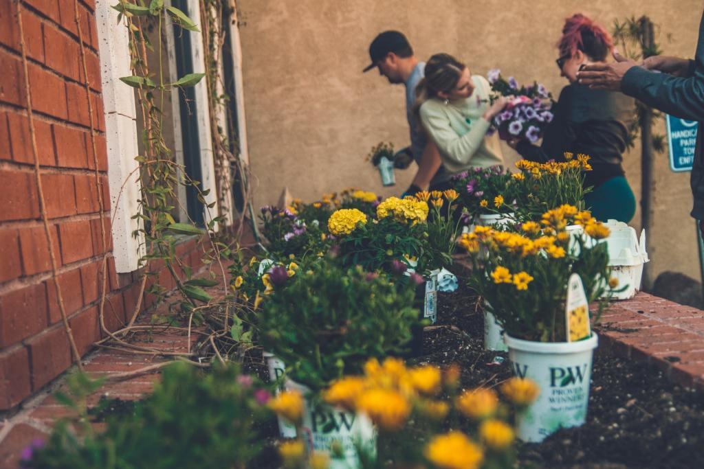 urbana hortikultura