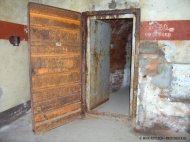 bunker-palmPB200391