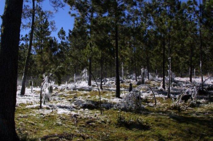 Que Frió! Se registran temperaturas cercanas a cero grados en áreas montañosas RD