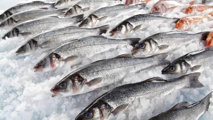 Aumentan ventas de pescado por alza del pollo
