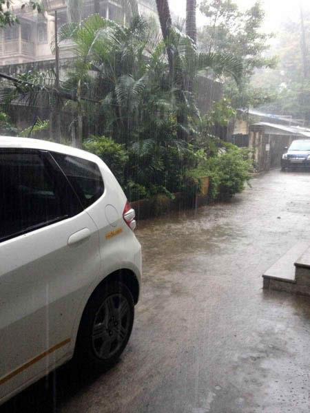 rain-768x1024
