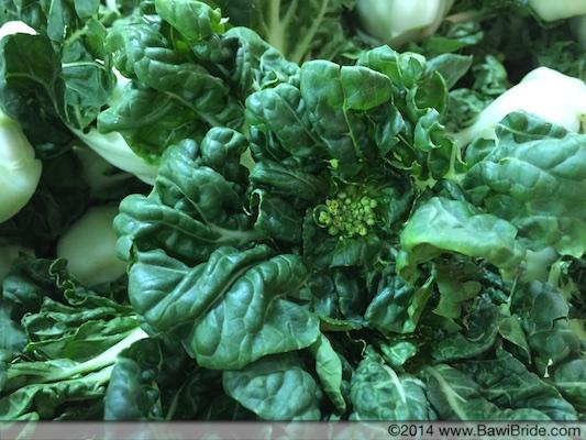 Fresh Greens_Guangzhou