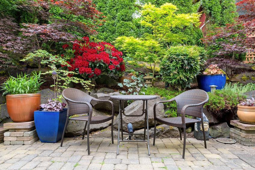 Ein Sitzplat auf der Terrasse mit vielen Pflanzen im Hintergrund