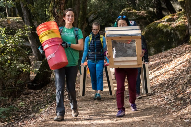 a group of volunteers walking on a trail, carrying brightly colored buckets and glass sifting frames
