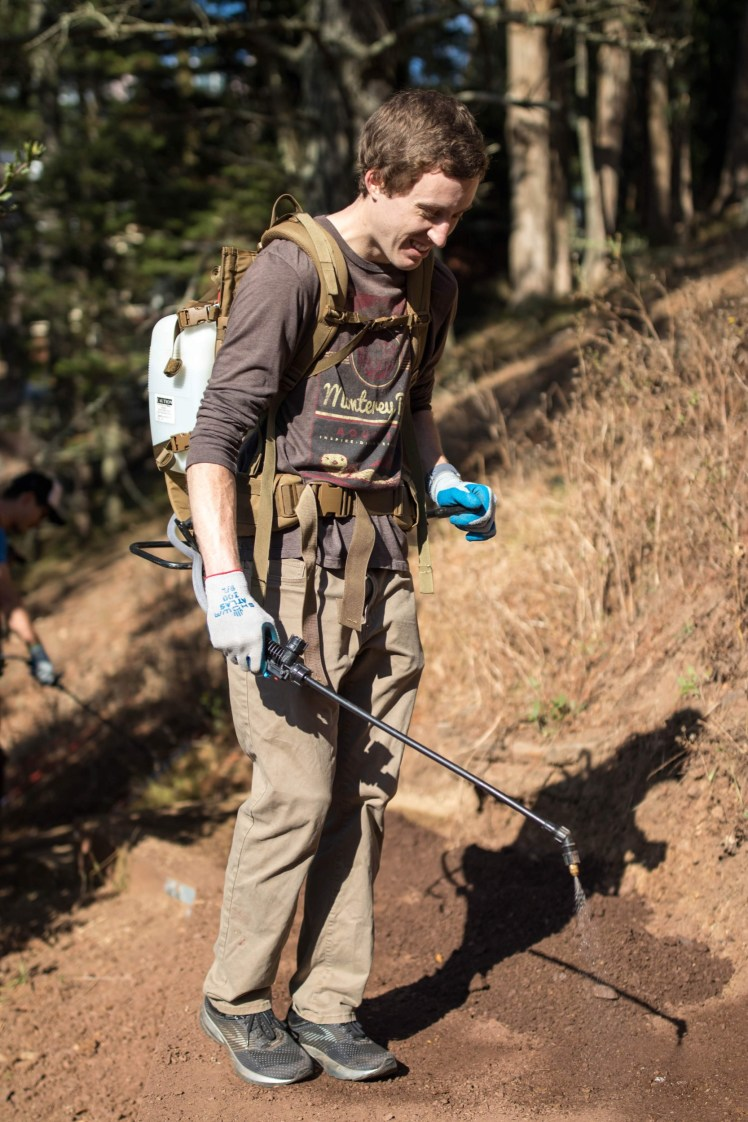 A volunteer wearing a water sprayer backpack wets down a trail.