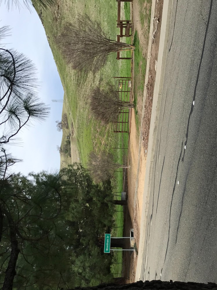 A cattle gate leading to the Browns Valley Open Space Preserve. Photo taken from across the street.