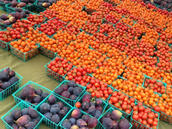 sea of the best sweet tiny tomatoes