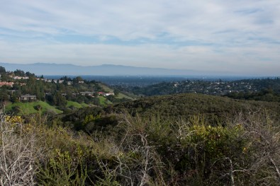 Overlooking Redwood City