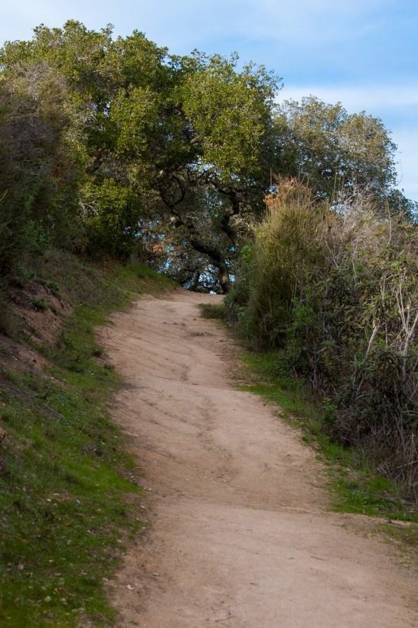 Pulgas Trail to the Top