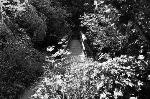 Stinson-black and white00
