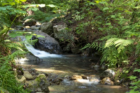 042917stinson water fall long exposure