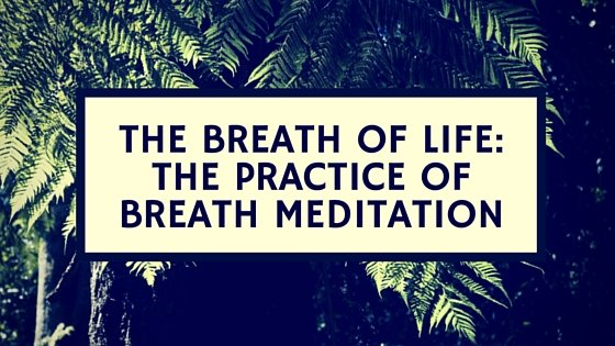 The Breath of Life: The Practice of Breath Meditation
